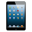 16GB iPad mini with Wi-Fi (Black & Slate)