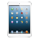 Apple | 16GB iPad mini with Wi-Fi (White & Silver) | MD531LLA