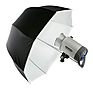 Parabolic Umbrella, 32 in. (80cm) - White