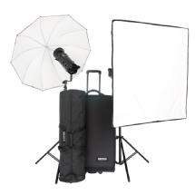 Bowens Gemini 1000Pro 2 Light Kit with Pulsar Tx/Rx Radio Remote (90-250V)
