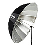 Deep Silver Umbrella (Extra Large, 65 In.)