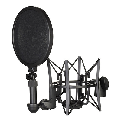 SM6 Shock Mount with Detachable Pop Filter Image 0