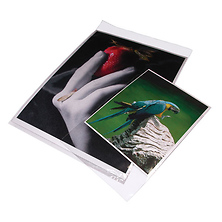 11x14 In. Clear Bags (Package of 100) Image 0