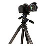 TAD28CB2 Series 2 Adventure Carbon Fiber Tripod with B2 Ball Head Thumbnail 7
