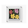 1414 BeSquare Floating Acrylic Frame (14 x 14