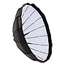 Beauty Dish with Grid (32 In.)