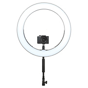 Bi-Color LED Ring Light (19 In.)