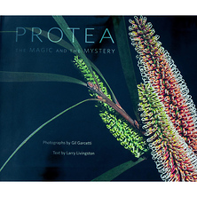 PROTEA: The Magic and the Mystery - Hardcover Book Image 0