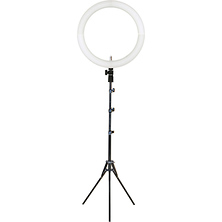 19 in. LED Bi-Color Ring Light Image 0