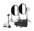 Monte Zucker Deluxe 4 Light Fluorescent Kit (120V)