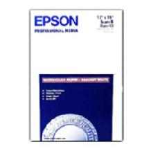 Epson Watercolor Radiant White 13