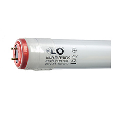True Match Fluorescent Lamp 75 Watts/2900K 4ft. Safety Coated Image 0