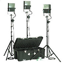 SL300 3 600 Watt SoftLight Quartz Light Kit with Light Cart on Wheels Carrying Case