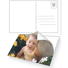 PhotoPOSTOS Postcards (12 Pack) Image 0