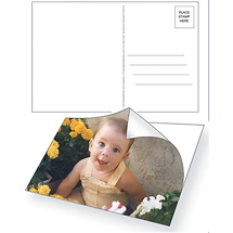 Dot Line Corp. PhotoPOSTOS Postcards (12 Pack)