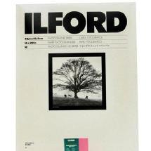Ilford 16 x 20