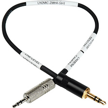 2.5mm Line to Mic Cable - Panasonic GH2 & GH1 DSLR to Zoom H4N Image 0