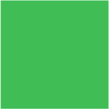 10' x 10' Cloth Muslin Photography Background (Choma Key Green) Image 0