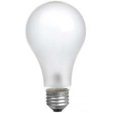 Incandescent Photoflood Lamp (250W / 115-120V) Image 0